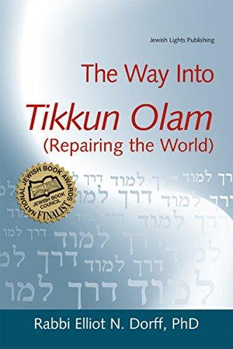 9781580233286: The Way Into Tikkun Olam (Repairing the World)