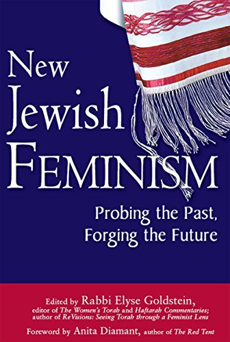 9781580233590: New Jewish Feminism: Probing the Past, Forging the Future