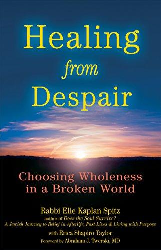 9781580233606: Healing from Despair: Choosing Wholeness in a Broken World