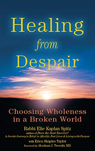 9781580234368: Healing from Despair: Choosing Wholeness in a Broken World