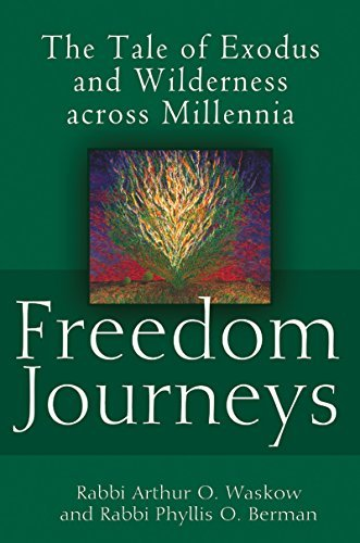 9781580234450: Freedom Journeys: The Tale of Exodus and Wilderness across Millennia