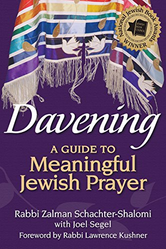 9781580236270: Davening: A Guide to Meaningful Jewish Prayer