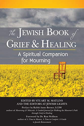 The Jewish Book of Grief Healing: A