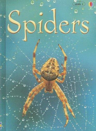 9781580869461: Spiders (Usborne Beginners)