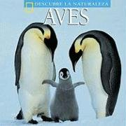 9781580871266: Aves (Descubre La Naturaleza)