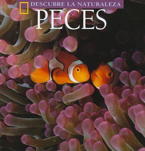9781580871297: Peces (Descubre La Naturaleza) (English and Spanish Edition)