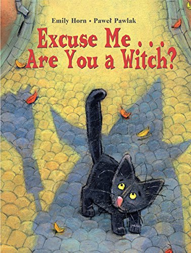 9781580891035: Excuse Me Are You a Witch?