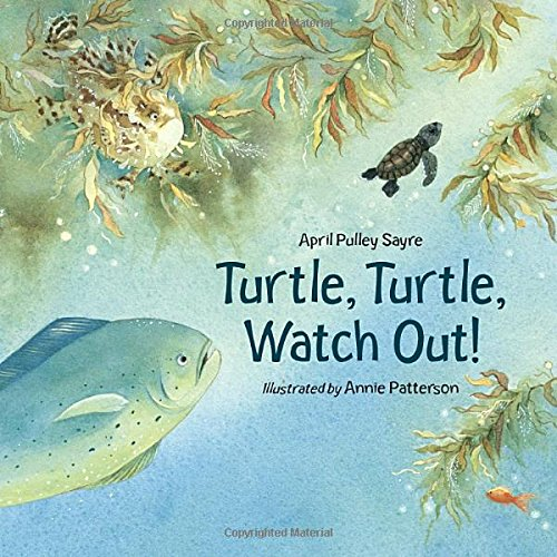 9781580891486: Turtle, Turtle, Watch Out!