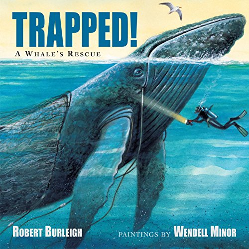 9781580895583: Trapped! A Whale's Rescue