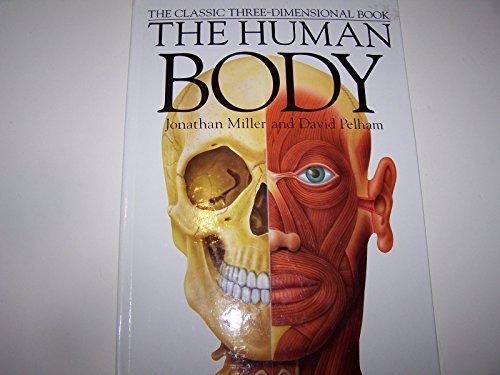 9781581170924: Human Body