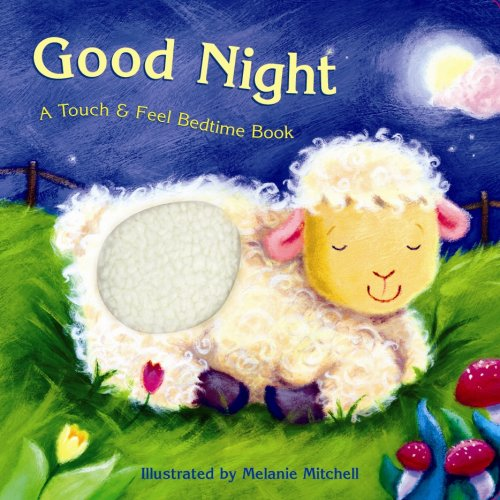 9781581177091: Good Night: A Touch & Feel Bedtime Book