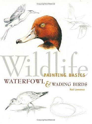 9781581800227: Wildlife Painting Basics Waterfowl & Wading Birds