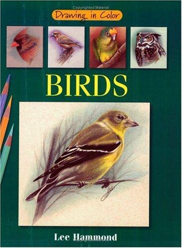 Birds (Drawing in Color): Lee Hammond