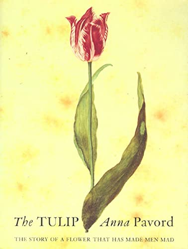 The tulip.: Pavord, Anna.