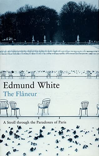 9781582341354: The Flaneur: A Stroll Through the Paradoxes of Paris