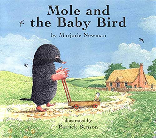 9781582347844: Mole and the Baby Bird