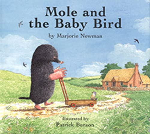9781582349145: Mole and the Baby Bird