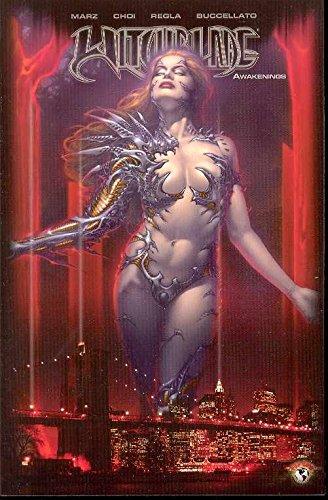 9781582406350: Witchblade Volume 11: Awakenings (v. 11)