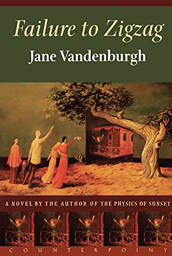 Failure To Zigzag: A Novel: Vandenburgh, Jane