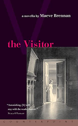 9781582431611: The Visitor