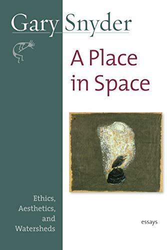 9781582434124: A Place in Space: Ethics, Aesthetics, and Watersheds
