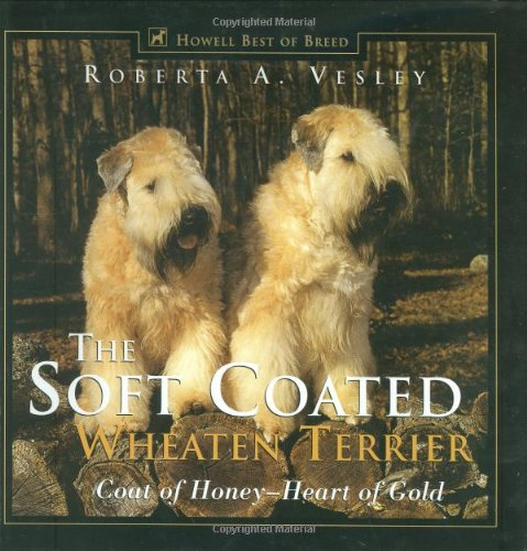 The Soft Coated Wheaten Terrie