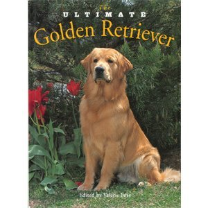 9781582450353: The Ultimate Golden Retriever