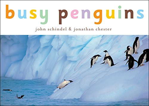 Busy Penguins (A Busy Book) (1582460167) by Schindel, John