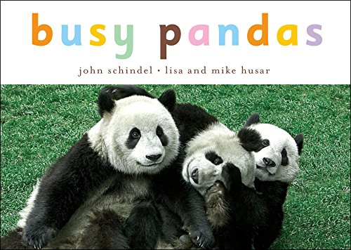 Busy Pandas (A Busy Book) (1582462593) by John Schindel