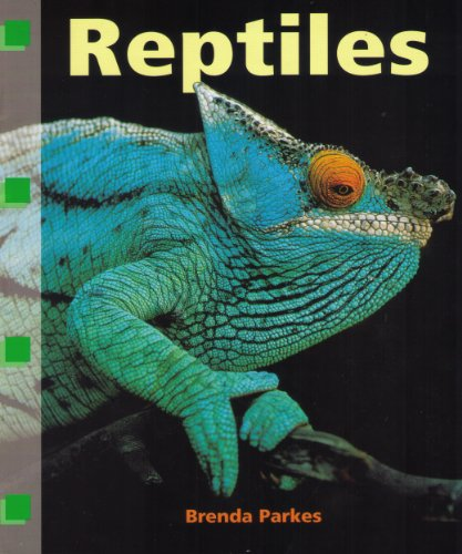 Reptiles (Curriculum Concepts): Susan Ring