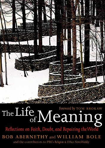9781583227589: The Life of Meaning: Reflections on Faith, Doubt, and Repairing the World