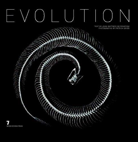 9781583227848: Evolution