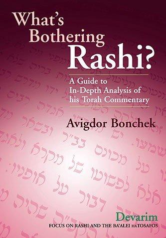 9781583305645: What's Bothering Rashi?: Devarim