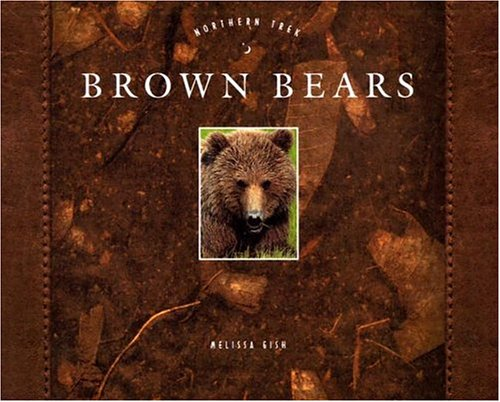 9781583406809: Brown Bears (Northern Trek)