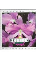 9781583410035: Orchids (Let's Investigate. Plants)