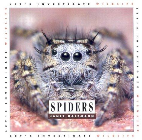 9781583411957: Spiders: Let's Investigate