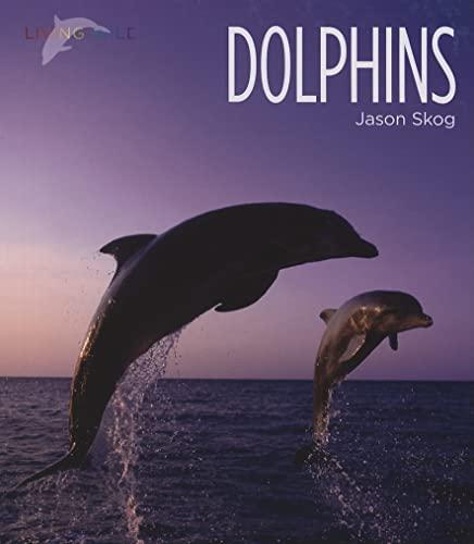 Dolphins (Hardback): Jason Skog