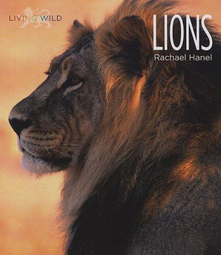 Lions (Hardback): Rachael Hanel
