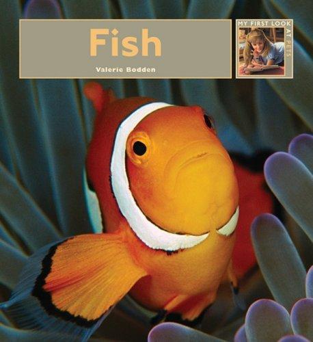 9781583417225: Fish (My First Look at Pets)