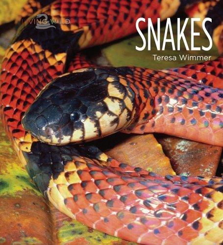 9781583417430: Snakes (Living Wild (Hardcover))