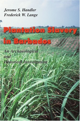 9781583485811: Plantation Slavery in Barbados: An Archeological and Historical Investigation