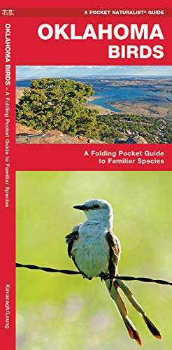 Oklahoma Birds: A Folding Pocket Guide to: James Kavanagh, Waterford