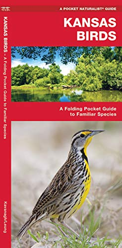9781583550472: Kansas Birds: A Folding Pocket Guide to Familiar Species (A Pocket Naturalist Guide)