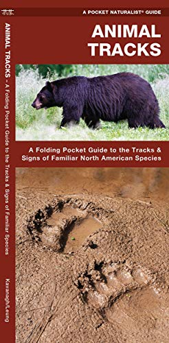 Animal Tracks: A Folding Pocket Guide to: James Kavanagh