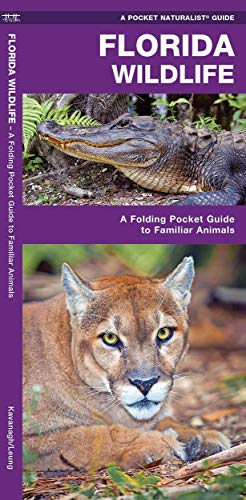 Florida Wildlife: A Folding Guide to Familiar: James Kavanagh