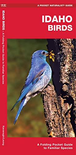 Idaho Birds: A Folding Pocket Guide to: James Kavanagh