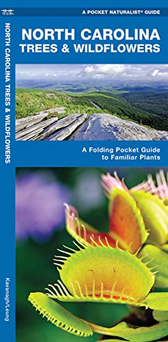9781583551134: North Carolina Trees & Wildflowers: A Folding Pocket Guide to Familiar Species (A Pocket Naturalist Guide)