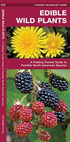 Edible Wild Plants: A Folding Pocket Guide to Familiar North American Species: James Kavanagh