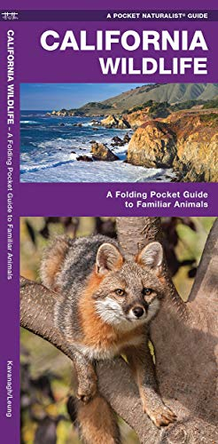 9781583551370: California Wildlife: A Folding Pocket Guide to Familiar Species (A Pocket Naturalist Guide)