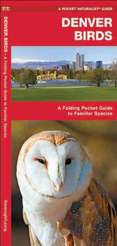 9781583551400 Denver Birds An Introduction To Familiar Species Us